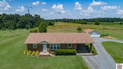 Calloway County Single Family Home For Sale: 382 Norsworthy Rd