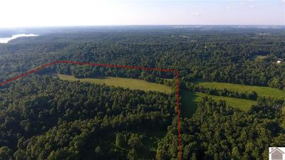 Eddyville Residential Lots & Land For Sale: Friendship Rd