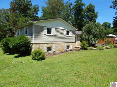 Mayfield KY Single Family Home Contract Recd - See Rmrks: $118,500