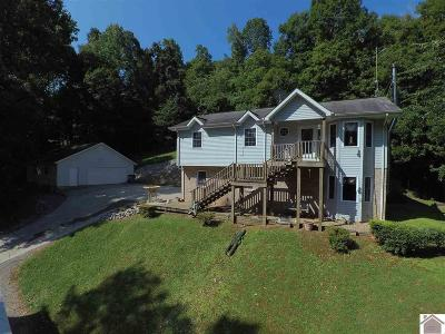 Single Family Home For Sale: 149 Raintree Dr