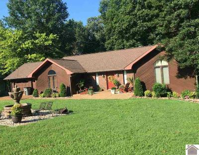Calloway County, Marshall County Single Family Home For Sale: 69 Lake Ridge Lane