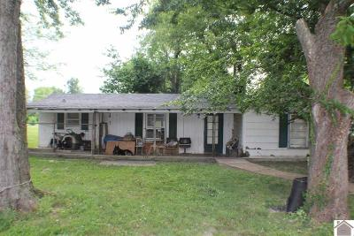 McCracken County Single Family Home For Sale: 1143 Yarbro Lane