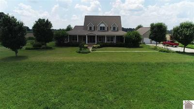 Calloway County, Marshall County Single Family Home For Sale: 5750 Us Hwy 641 S
