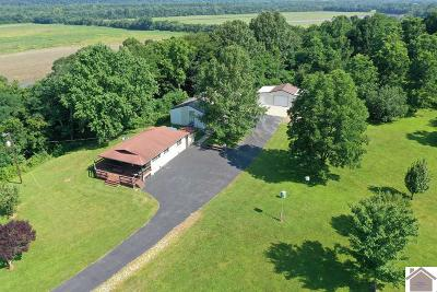Livingston County, Lyon County, Trigg County Single Family Home For Sale: 1675 River Road