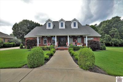 McCracken County Single Family Home For Sale: 295 Willow Lake