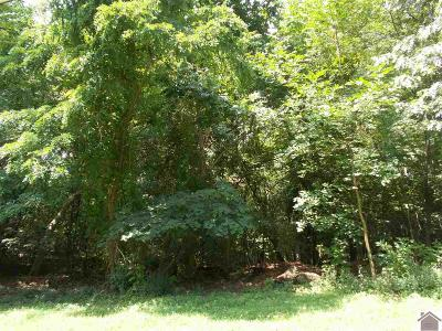 Gilbertsville Residential Lots & Land For Sale: 95 Sexton