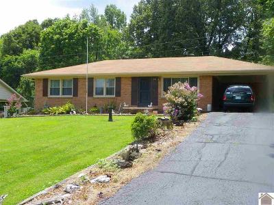 Calvert City Single Family Home For Sale: 910 E 7th Street