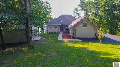 Livingston County, Lyon County, Trigg County Single Family Home For Sale: 178 Wellsley Way