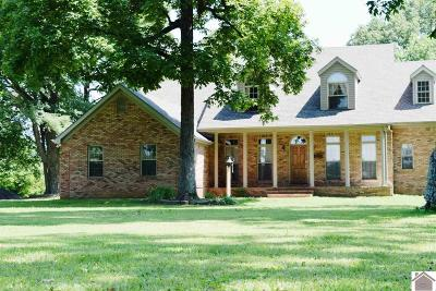 Calloway County Single Family Home Contract Recd - See Rmrks: 5922 Murray Paris Rd