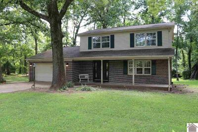 Calloway County Single Family Home For Sale: 153 Guinevere