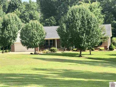 Cadiz Single Family Home For Sale: 4239 Blackhawk Road