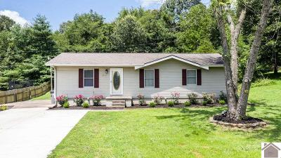 Paducah Single Family Home For Sale: 5951 Oakhaven Drive