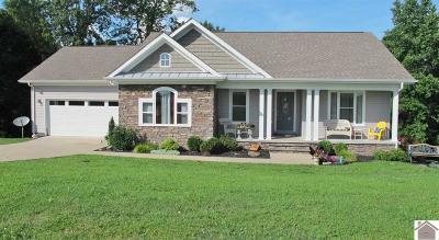 Single Family Home For Sale: 312 Oak View Lane