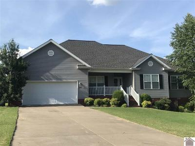 Single Family Home For Sale: 229 Eagle Lake Dr