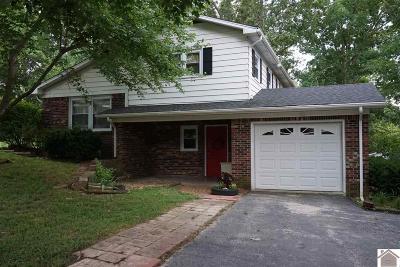Kuttawa KY Single Family Home For Sale: $134,900