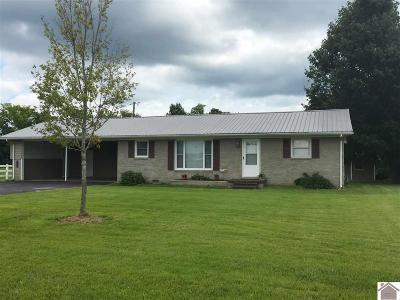 Benton KY Single Family Home For Sale: $139,900