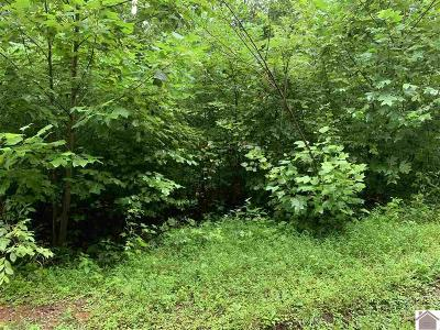 Trigg County Residential Lots & Land For Sale: Lot 74t Unit 2