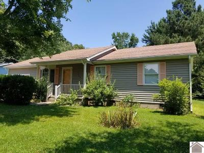 McCracken County Single Family Home For Sale: 7465 Nathan Drive