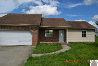 McCracken County Condo/Townhouse For Sale: 3565 Roberts Road