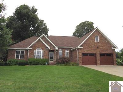 Calloway County, Marshall County Single Family Home For Sale: 88 Blissful View
