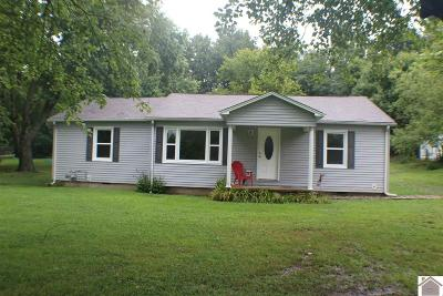 Mayfield Single Family Home For Sale: 6047 State Route 45 S
