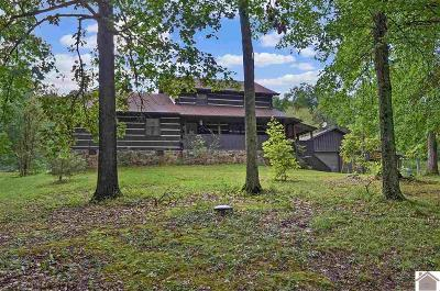 Livingston County Single Family Home For Sale: 1830 Us Hwy 60 East
