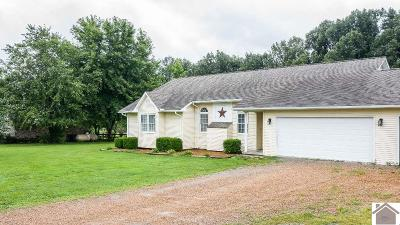 McCracken County Single Family Home For Sale: 5845 Kerry Drive