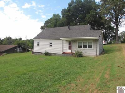 Benton KY Single Family Home For Sale: $49,900