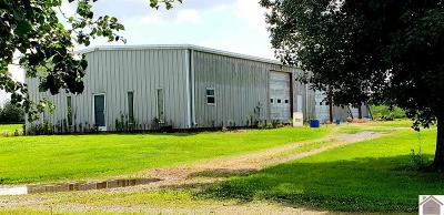 Calloway County Farm For Sale: 4036 Shoemaker Rd