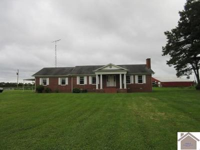Calloway County Single Family Home For Sale: 8521 State Route 121 North