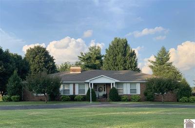 Hopkinsville Single Family Home For Sale: 114 Talbert Drive