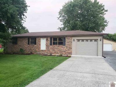 Livingston County Single Family Home Contract Recd - See Rmrks: 220 Wyondotte Way
