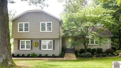 Paducah Single Family Home For Sale: 300 Lutes Road