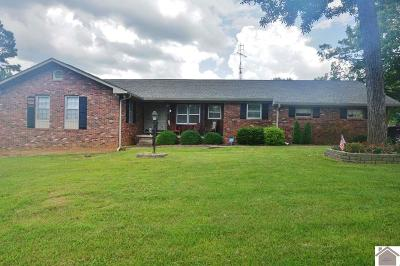 Lyon County, Trigg County Single Family Home For Sale: 86 Lincoln Ave