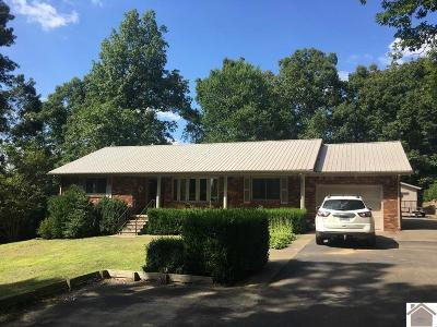 Livingston County Single Family Home Contract Recd - See Rmrks: 751 Sugar Creek Road