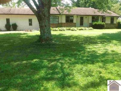Marshall County Single Family Home For Sale: 5983 Us Hwy 68 W