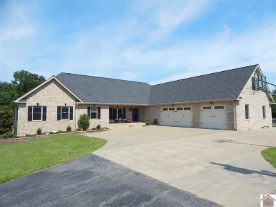 Calloway County, Marshall County Single Family Home For Sale: 364 Serenity Lane