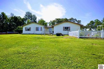 Gilbertsville Single Family Home For Sale: 284 Denzel Martin Rd