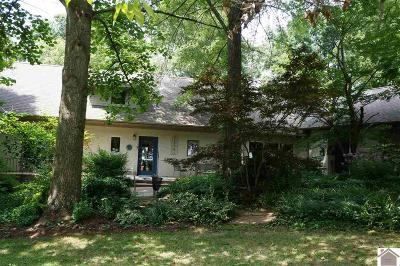 Calloway County, Marshall County Single Family Home For Sale: 1812 Old Salem Road