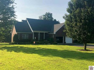 Fancy Farm Single Family Home For Sale: 159 Ewing Lane