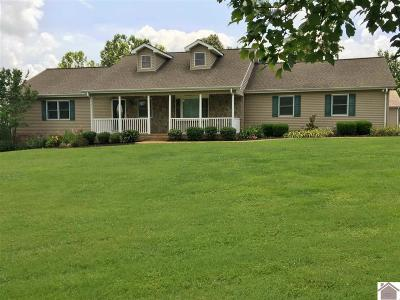 Calloway County, Marshall County Single Family Home For Sale: 2215 Oak Level Rd