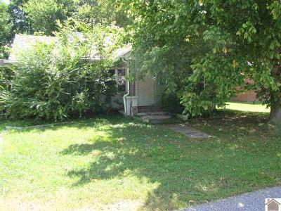 Calvert City Single Family Home For Sale: 97 Alaska St