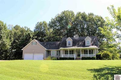 Calloway County, Marshall County Single Family Home For Sale: 799 Starks Cemetery Rd
