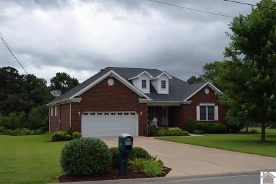 Calloway County, Marshall County Single Family Home For Sale: 46 Gentle Drive