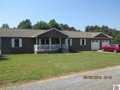 Hickory Single Family Home For Sale: 7 Joy Lane