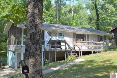 Lyon County, Trigg County Single Family Home For Sale: 159 Daffodil Dr