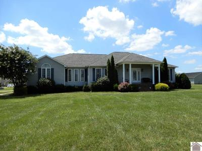 Graves County Single Family Home For Sale: 213 Smiths Ln