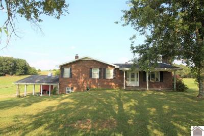 Lyon County, Trigg County Single Family Home For Sale: 6890 Princeton Rd