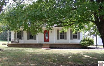 Marshall County Single Family Home For Sale: 3887 Lakeview Church Road