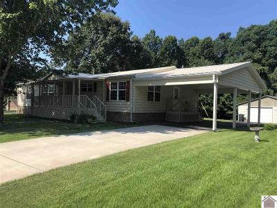 Benton Manufactured Home For Sale: 190 Green Acres Lane